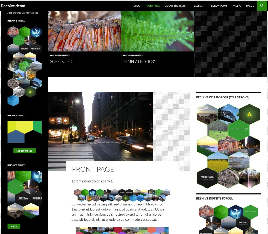 WordPress hexagons
